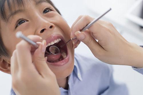 歯科の定期健診