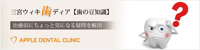 三宮ウィキ歯ディア【歯の豆知識】治療前にちょっと気になる疑問を解消