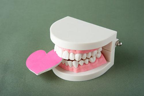 自由診療での義歯(入れ歯)治療